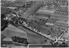 Grüneck Luftbild
