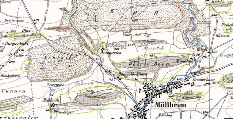 Karte 1890_geoadmin_Rebberge