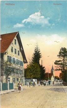 Rebstock, Postkarte 1920