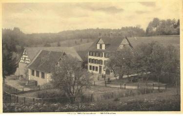 Weingarten 2