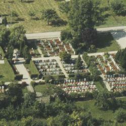 1981_LBS_L1-810872_7.7.1981_Friedhof